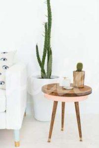 Cómo realizar una decoración con cactus | Woodies