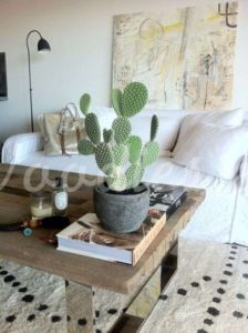 Decoración con cactus: centro de mesa | Woodies
