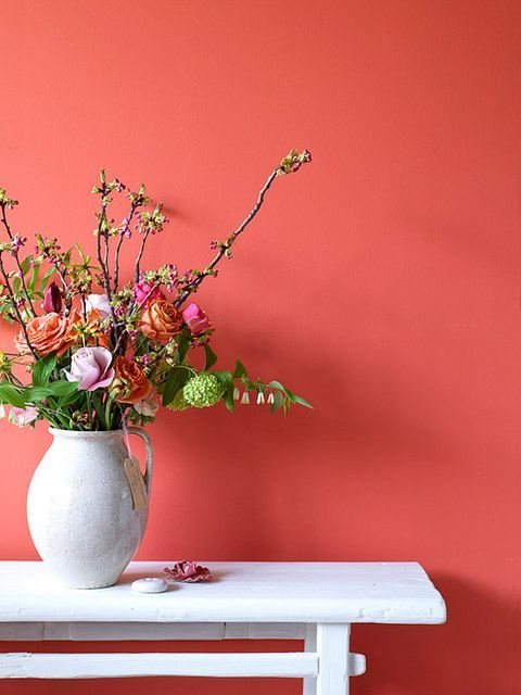 Living Coral, el color Pantone de 2019