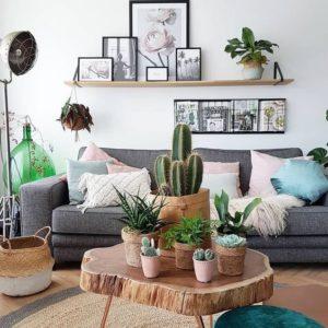 Ideas para decorar con cactus