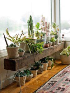 aprovechar rincones sin uso con plantas